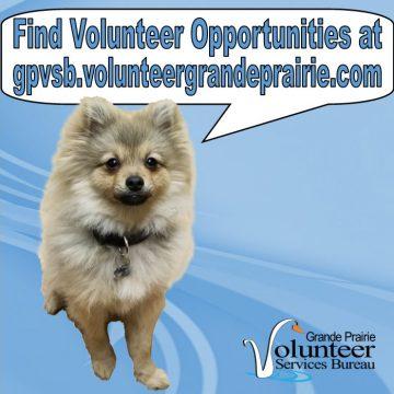 Dog saying Find Volunteer Opportunities at gpvsb.volunteergrandeprairie.com