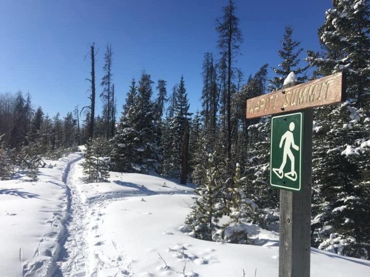 snowy escapades - trail sign in winter