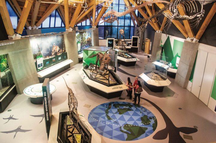 philip j currie dinosaur museum