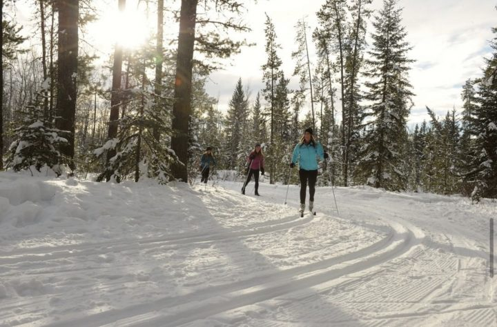 three people cross country skiing - cross-country skiing and snowshoeing blog
