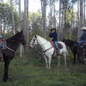 Riding horses at Horse trekking adventures.